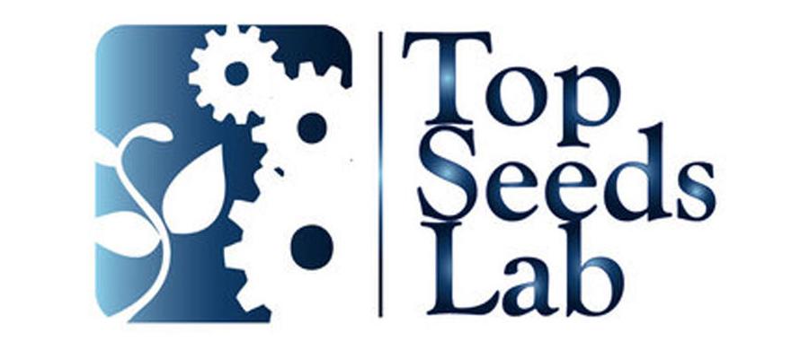 140624-seed-lab