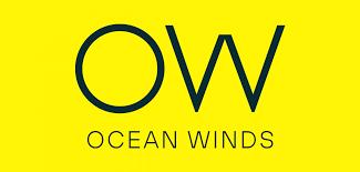 Nace Ocean Winds, la nueva empresa especializada en energía eólica marina  llamada a convertirse en líder mundial | EDP Renováveis